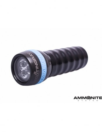Ammonite LED Stingray